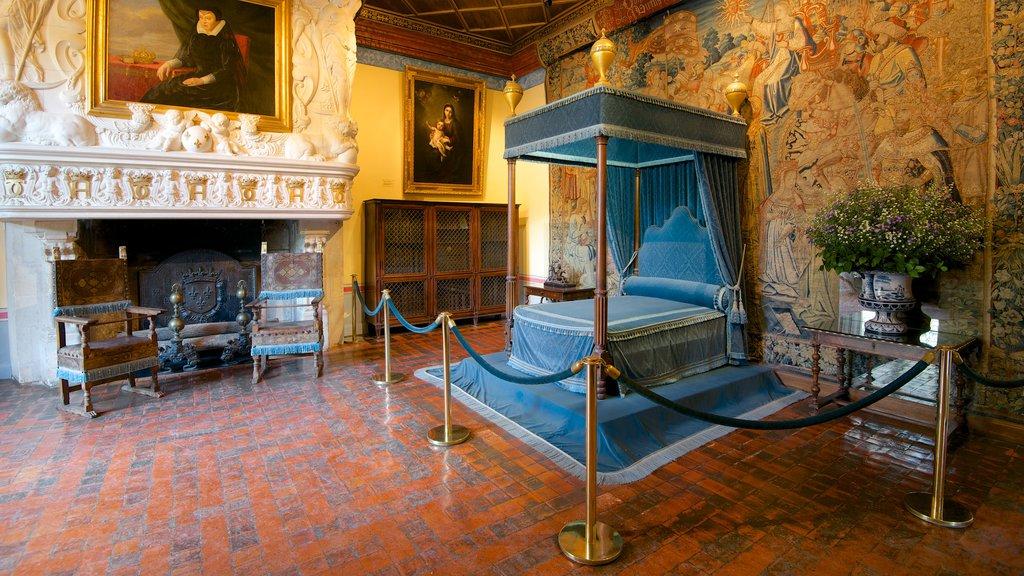 Chateau de Chenonceau showing art, a castle and interior views