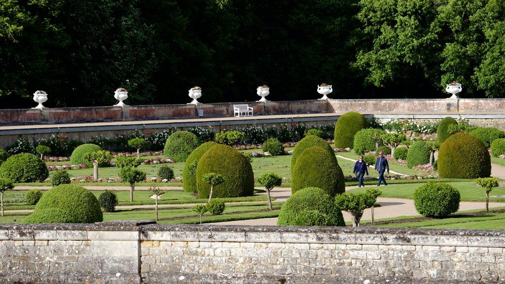 Chateau de Chenonceau showing a park and a castle