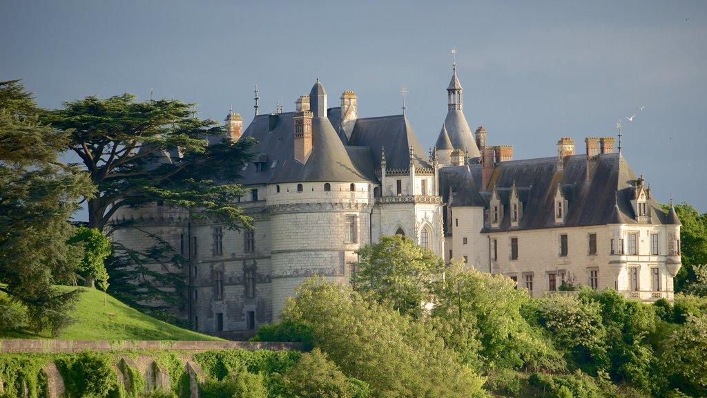 Chateau de Chaumont showing chateau or palace