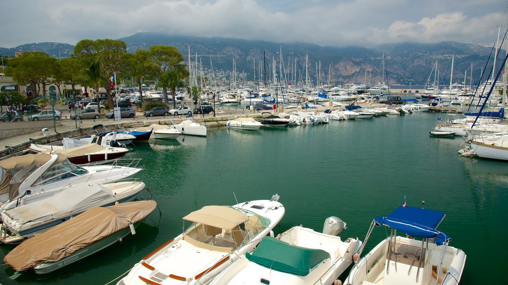 Saint-Jean-Cap-Ferrat which includes a marina