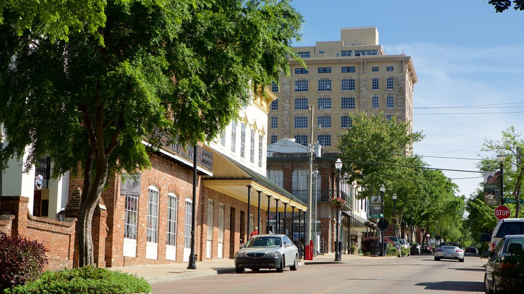 Vicksburg showing a small town or village