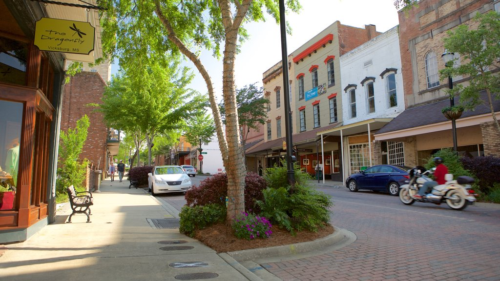 Vicksburg showing a small town or village and street scenes