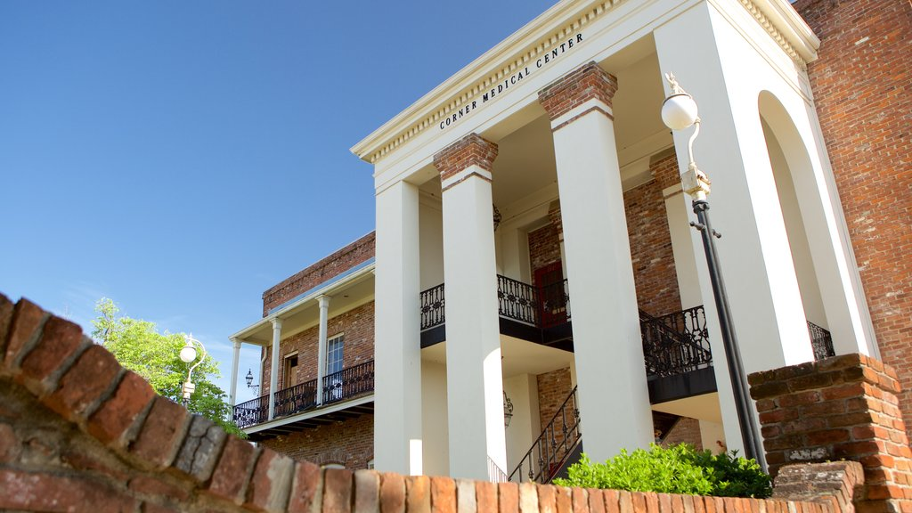 Vicksburg showing a house