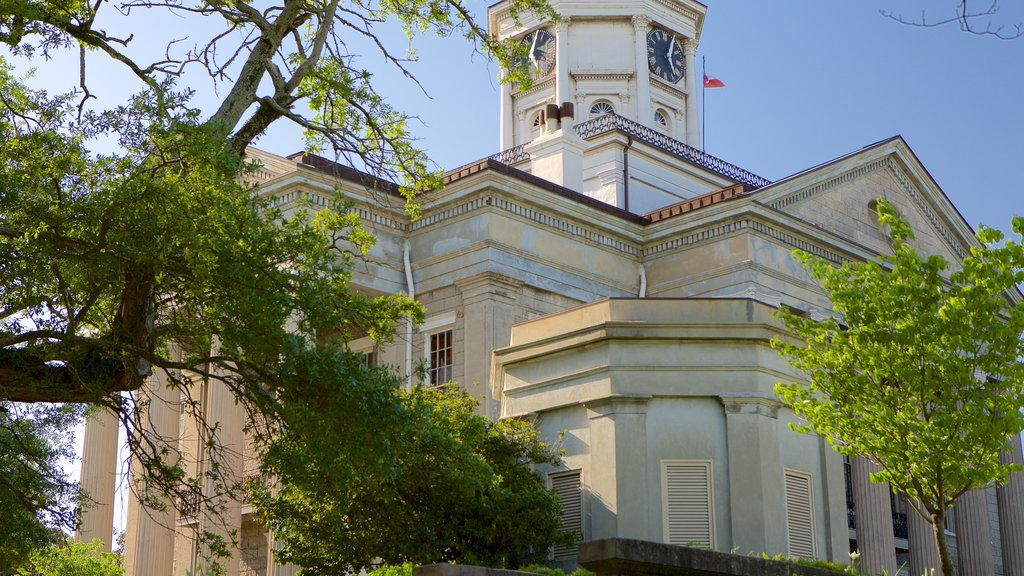 Warren County Courthouse showing heritage architecture