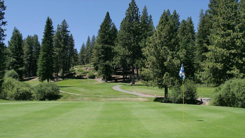 Northstar California Resort showing golf