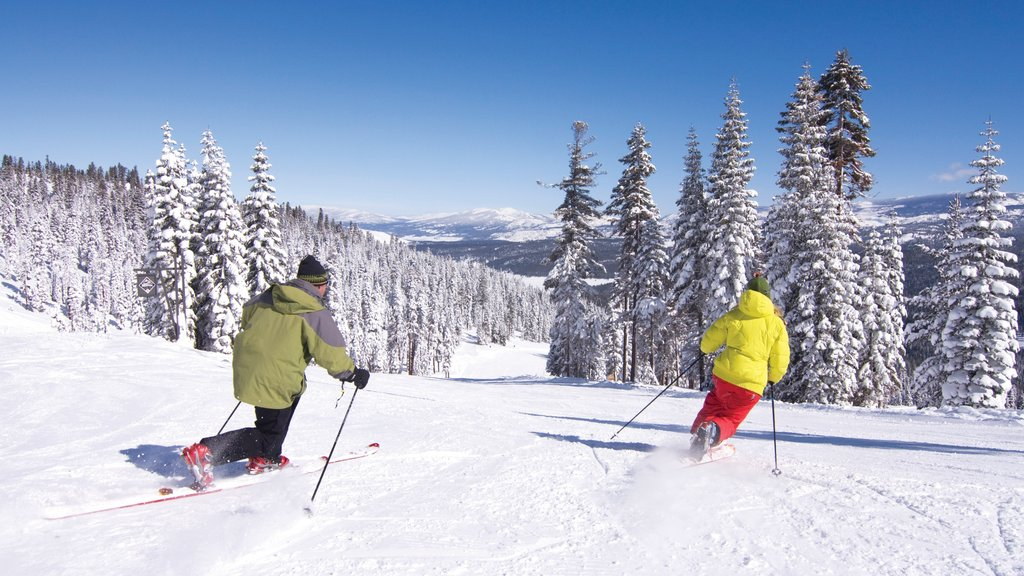Northstar California Resort which includes snow and cross country skiing as well as a small group of people