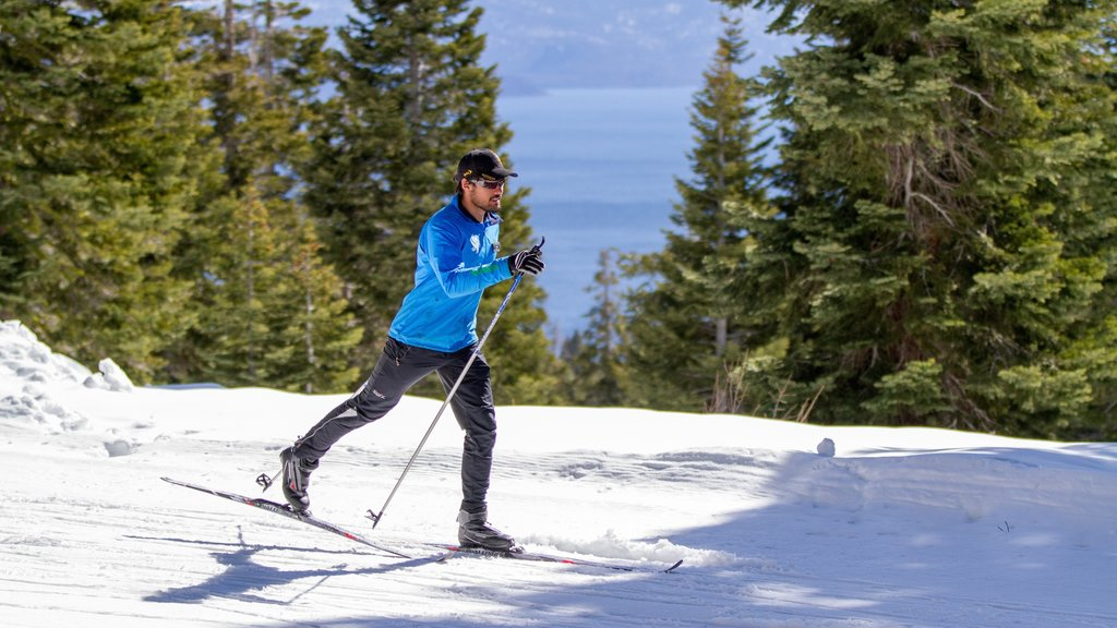 Northstar California Resort showing snow and cross country skiing as well as an individual male