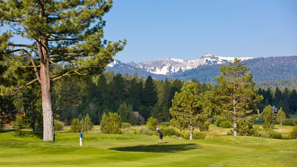 Northstar California Resort showing golf as well as a small group of people