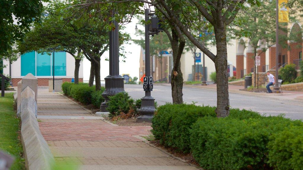 Harrisonburg mostrando un jardín y escenas urbanas