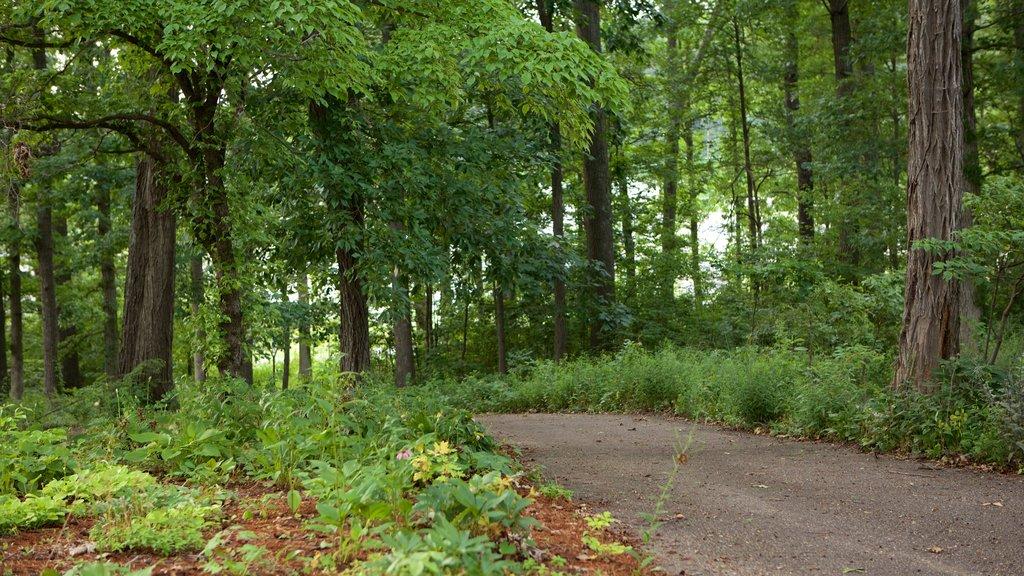 Harrisonburg que incluye un jardín