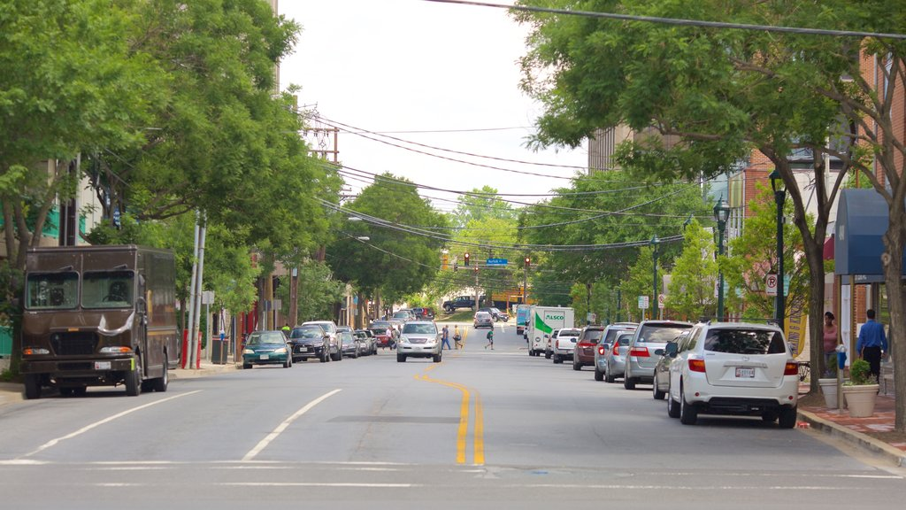 Bethesda, MD showing street scenes and a city