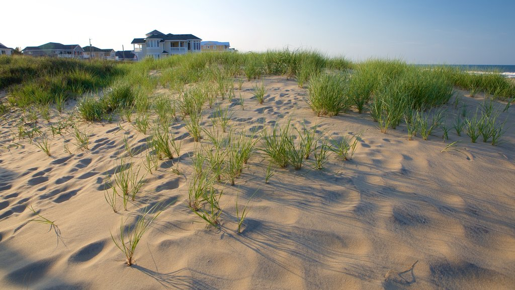 Sandbridge Beach showing a sandy beach and a coastal town