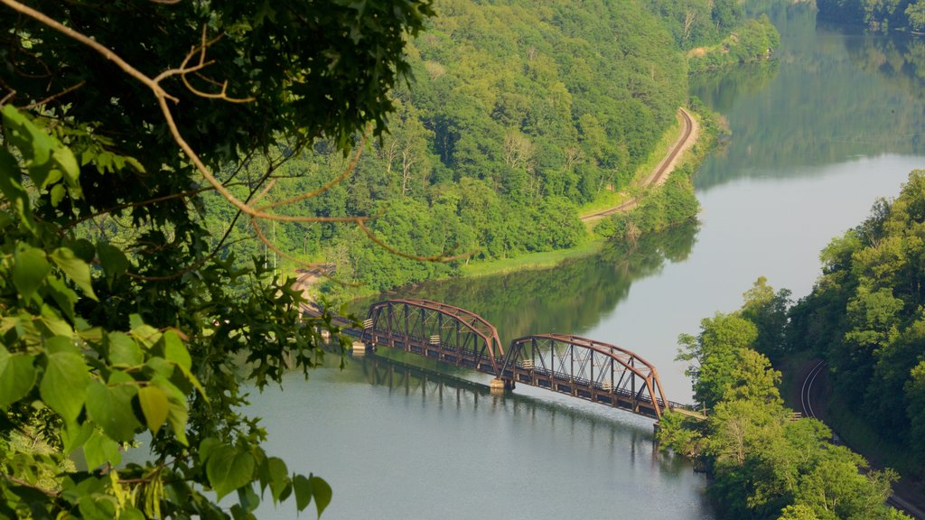 Hawks Nest State Park showing a bridge, tranquil scenes and a river or creek