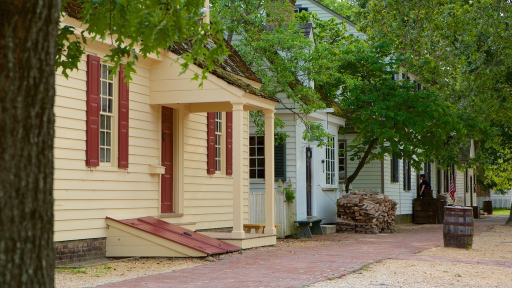 Colonial Williamsburg Visitor Center showing heritage elements and a house