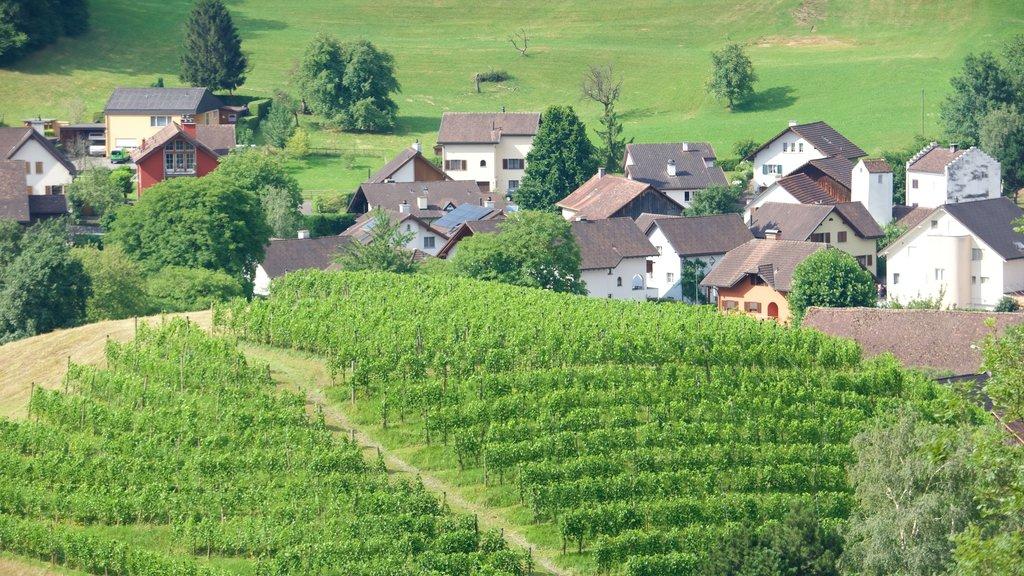 Liechtenstein showing a small town or village, tranquil scenes and farmland