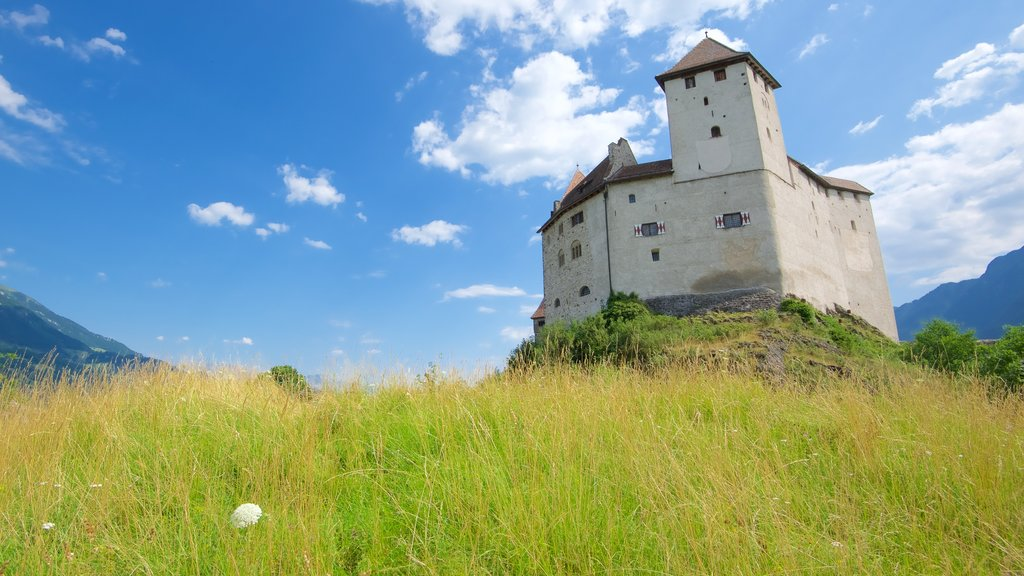 Liechtenstein featuring heritage elements, chateau or palace and tranquil scenes