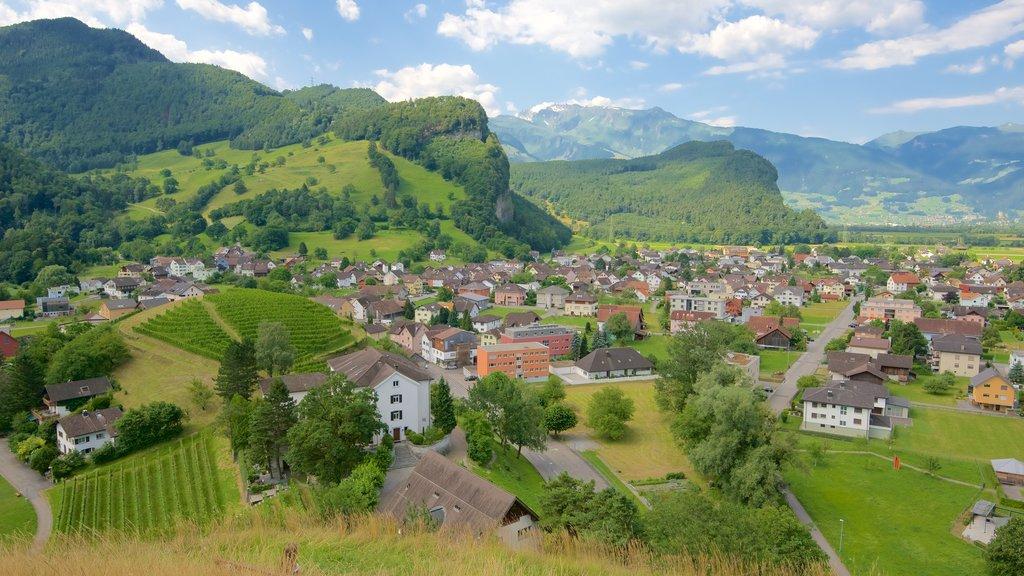 Liechtenstein showing a small town or village, farmland and landscape views