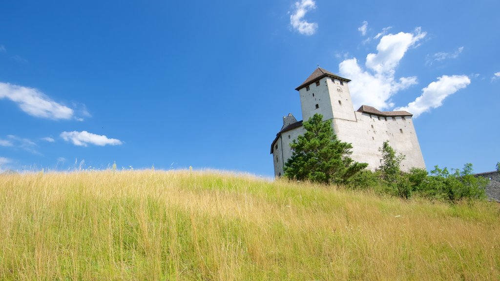 Liechtenstein showing heritage elements, chateau or palace and tranquil scenes