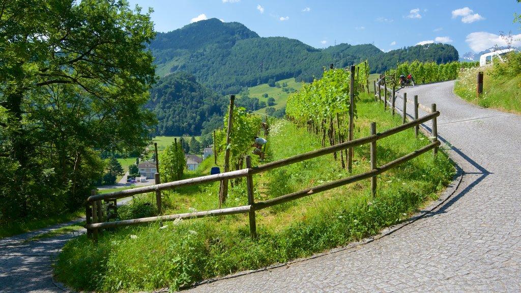 Liechtenstein featuring tranquil scenes