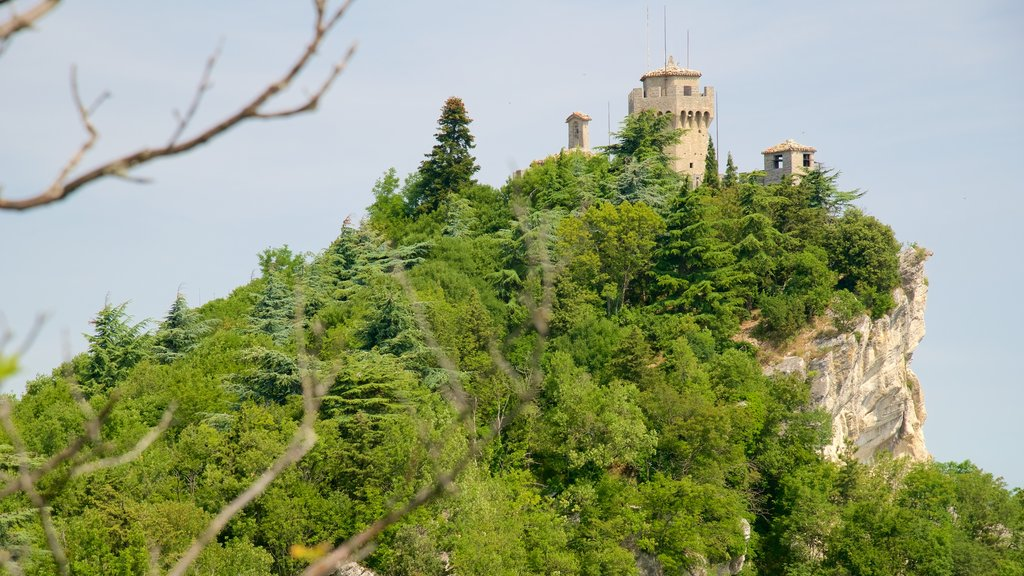 Montale Tower showing mountains, a castle and heritage elements