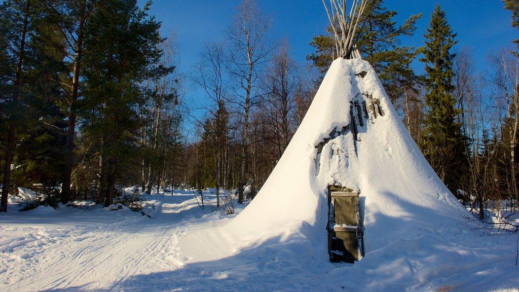 Kemi featuring snow