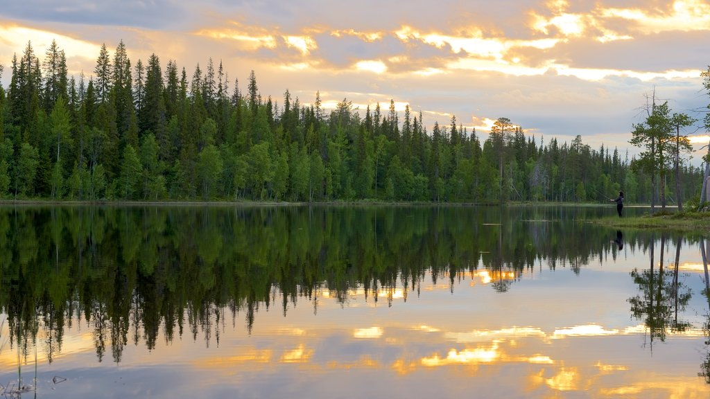 Rovaniemi which includes a sunset, forest scenes and a lake or waterhole