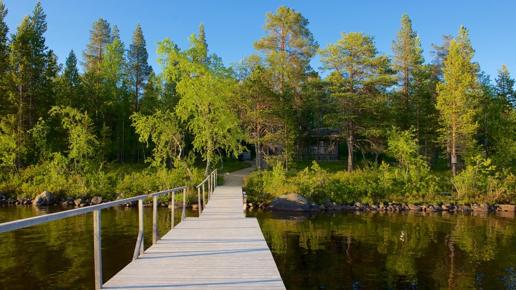 Inari featuring tranquil scenes, views and a lake or waterhole