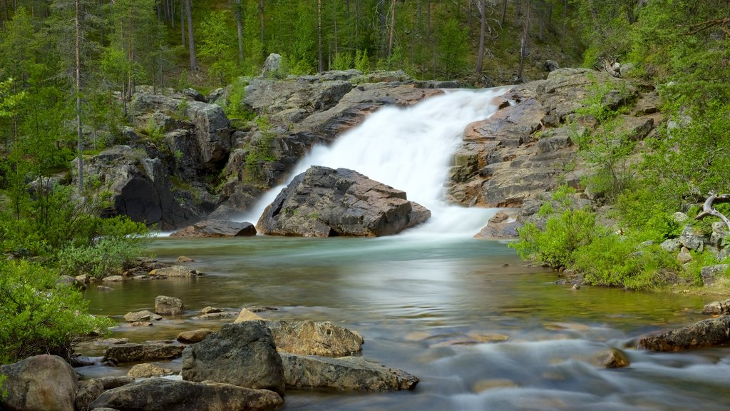 Lemmenjoki National Park which includes a river or creek, tranquil scenes and rapids