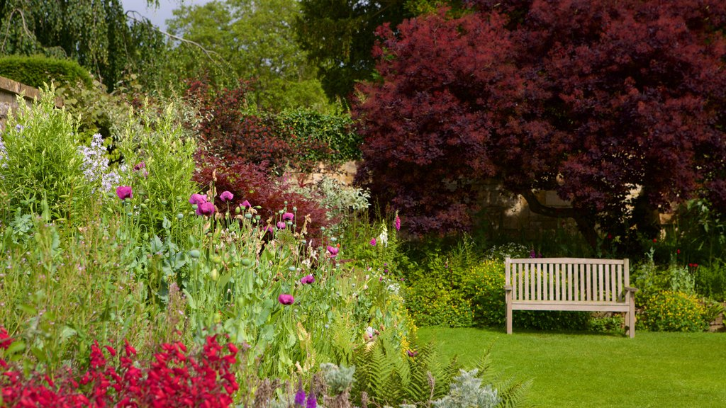 Sudeley Castle showing flowers and a park