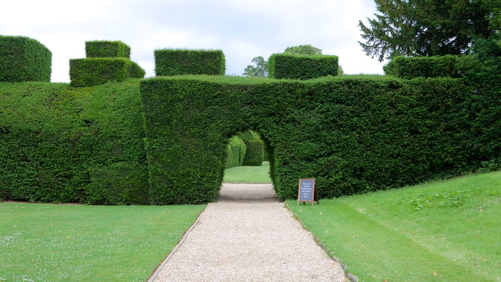 Sudeley Castle which includes a park and chateau or palace