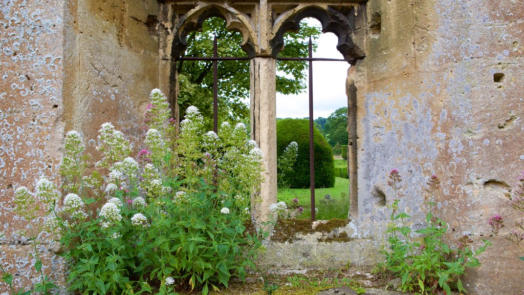 Sudeley Castle showing flowers and building ruins