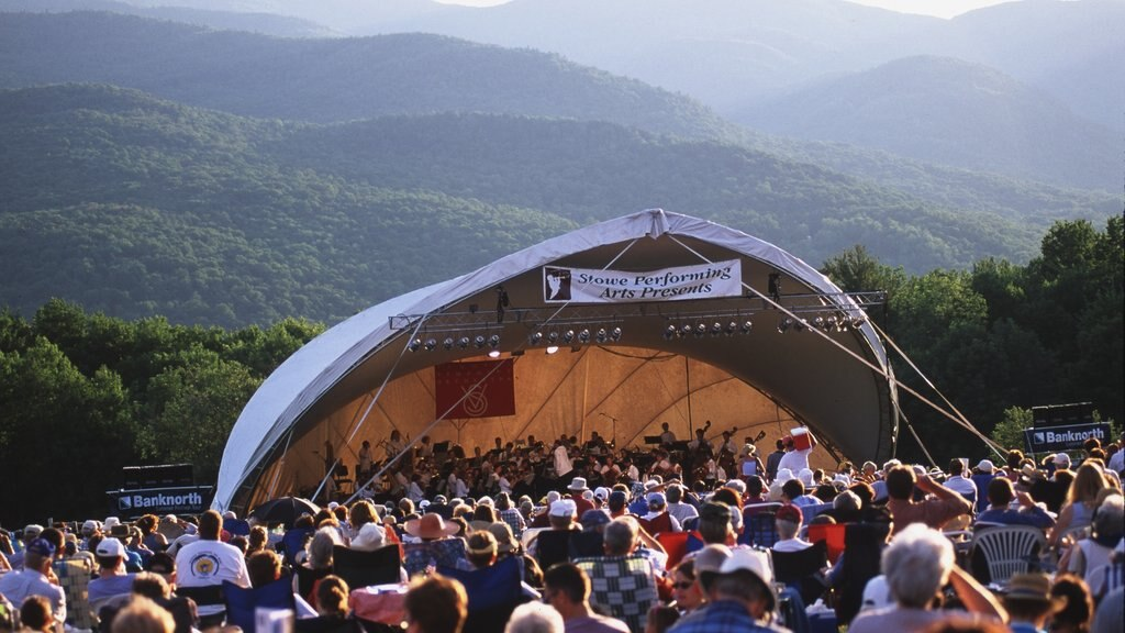 Stowe showing a festival, performance art and music