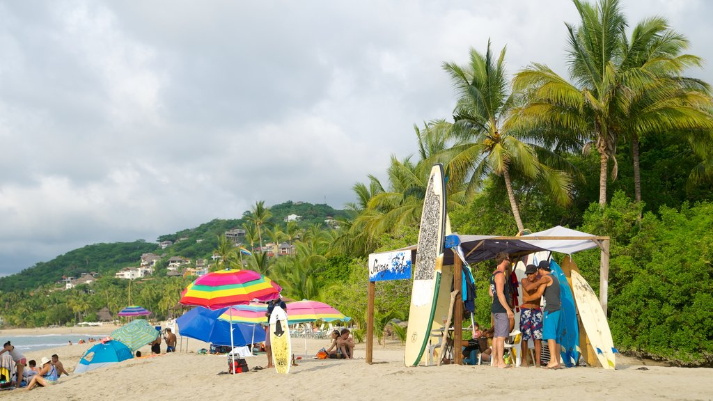 Sayulita which includes tropical scenes, a sandy beach and surfing