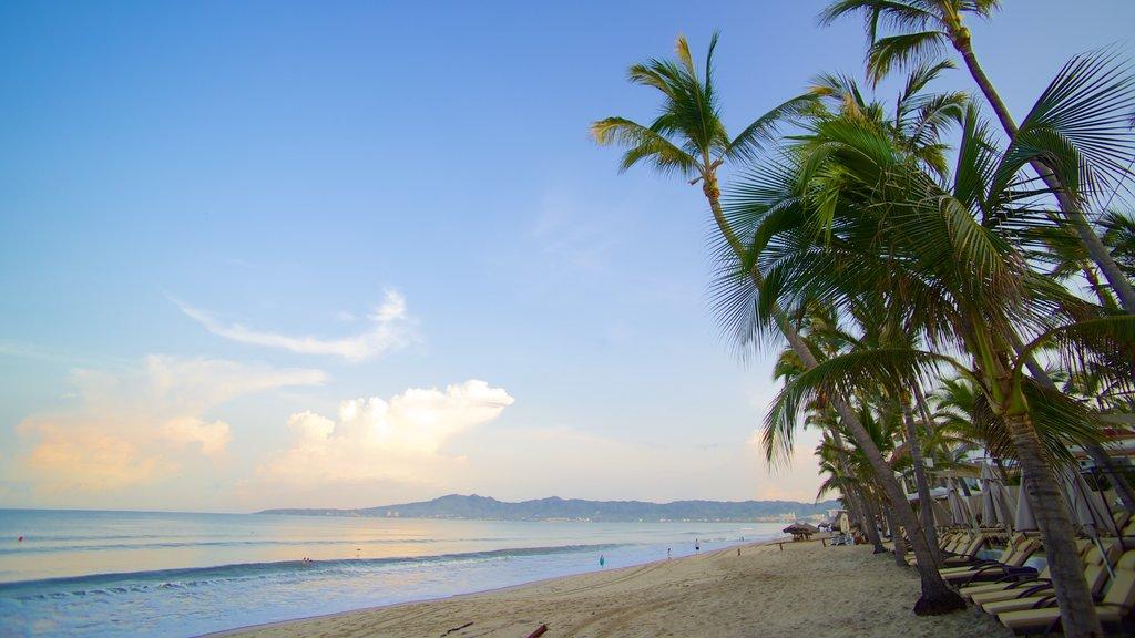 Nuevo Vallarta Beach featuring a sandy beach, landscape views and tropical scenes