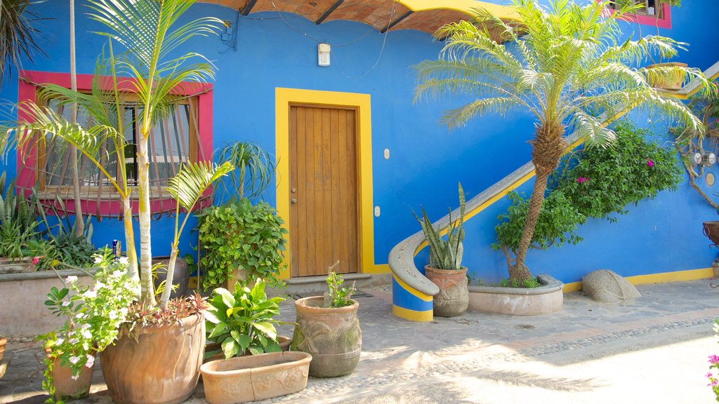 Sayulita showing a house