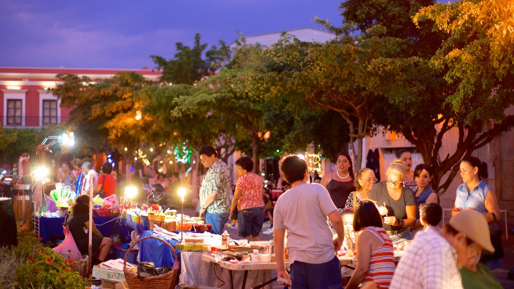 Plaza Machado which includes night scenes and markets as well as a small group of people