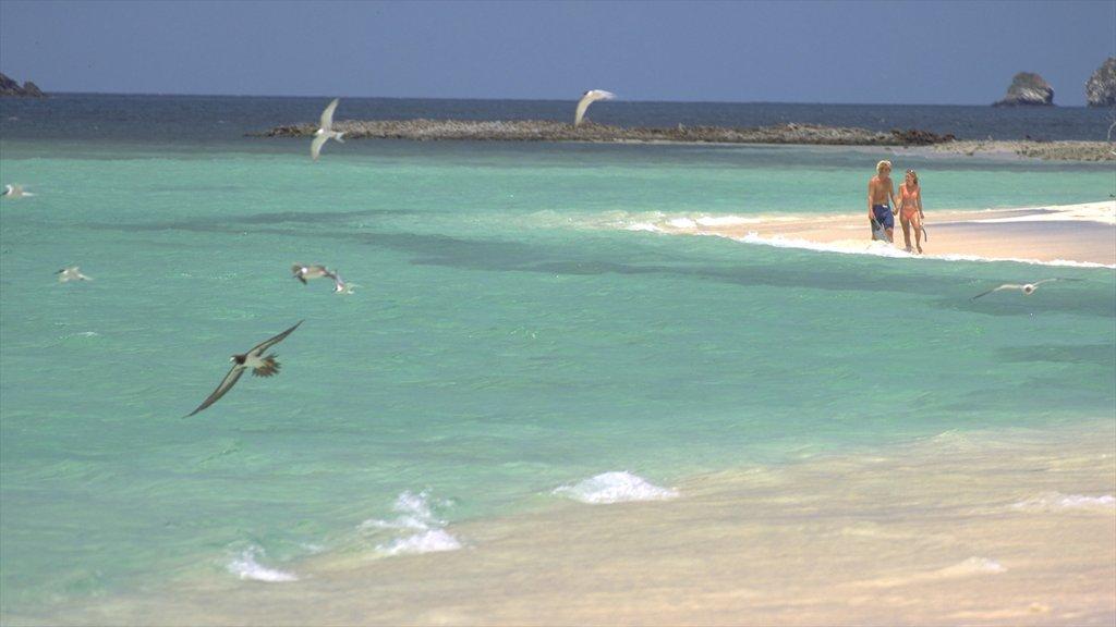 Granada ofreciendo una playa