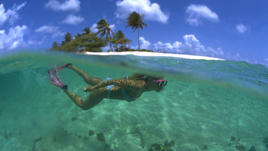 Granada ofreciendo una playa de arena y snorkeling y también una mujer