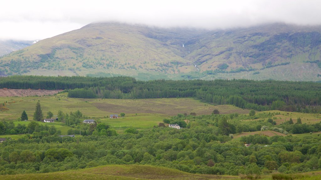 Ben Nevis featuring mountains, forest scenes and landscape views