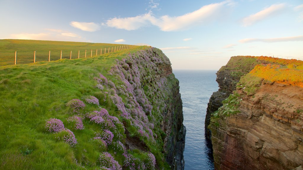Duncansby Head which includes tranquil scenes, general coastal views and rocky coastline
