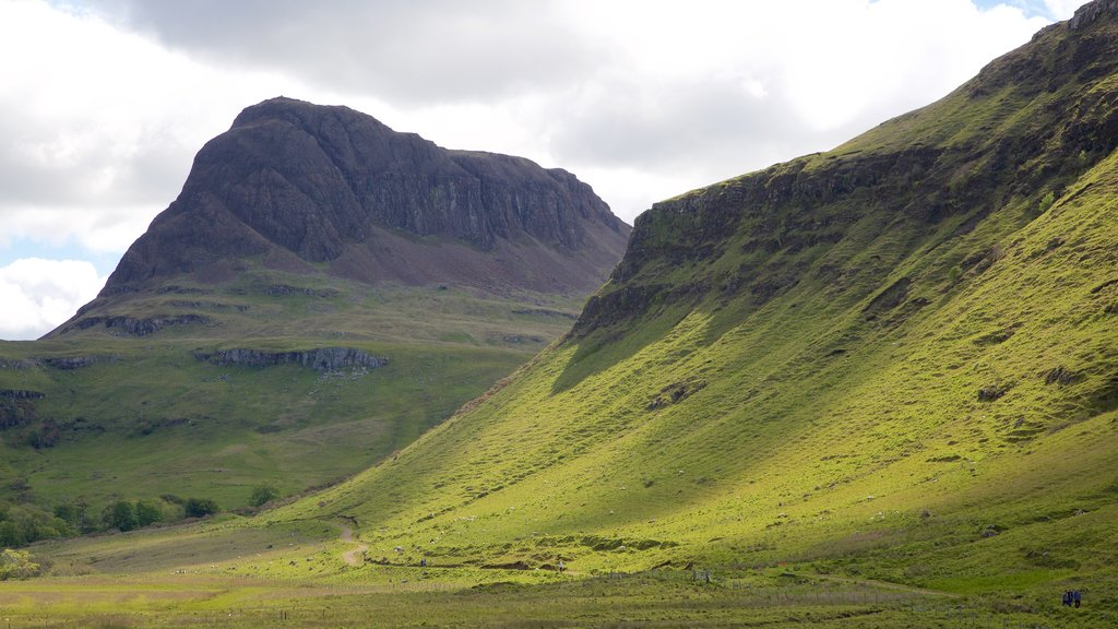 Isle of Skye showing mountains and tranquil scenes