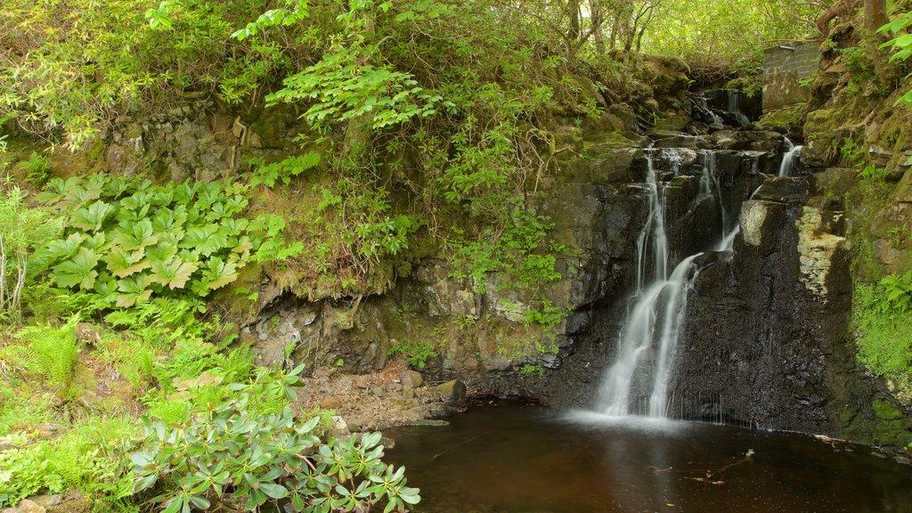 Castillo de Dunvegan ofreciendo un estanque y una cascada