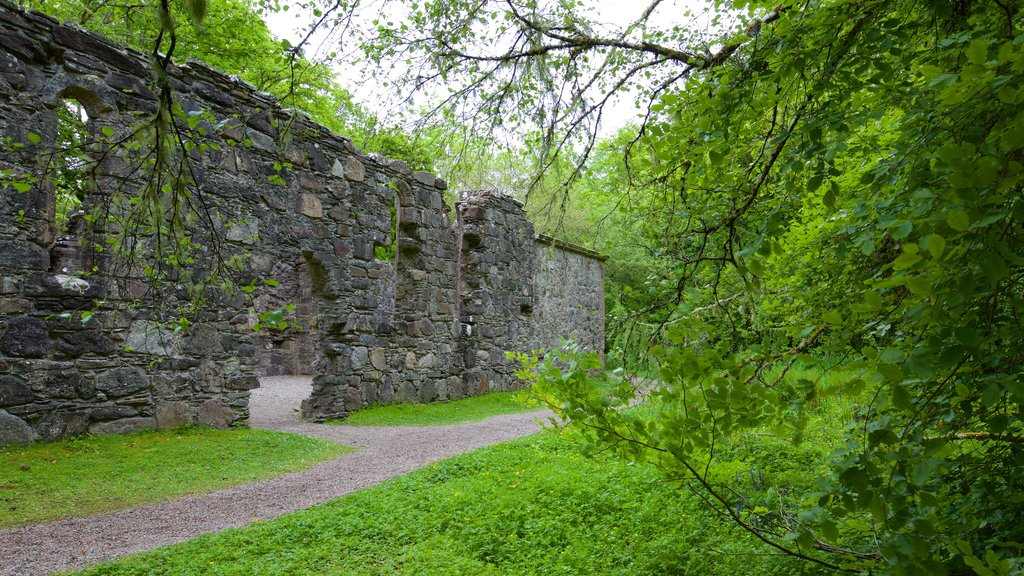 Dunstaffnage Castle and Chapel which includes heritage architecture, building ruins and heritage elements