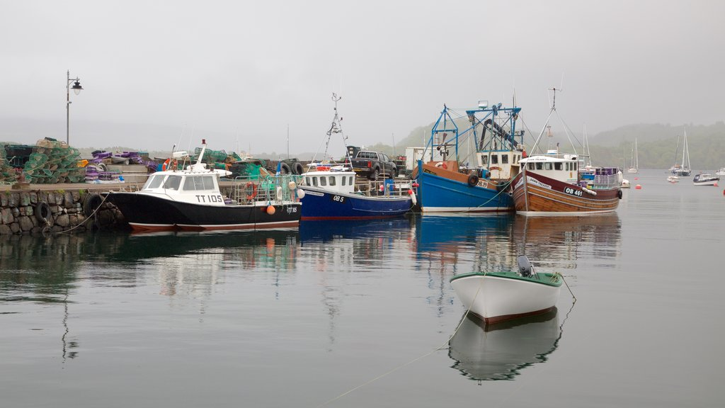 Isle of Mull showing a marina, a bay or harbor and boating