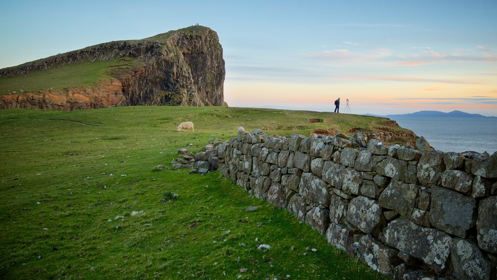 Isle of Skye showing tranquil scenes and general coastal views as well as a couple