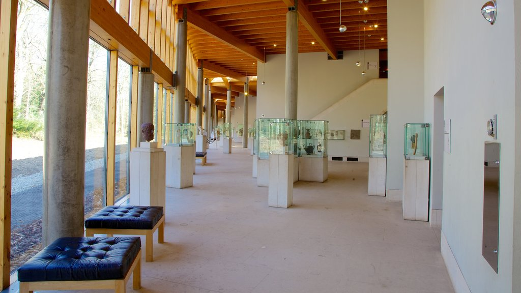 Burrell Collection featuring art