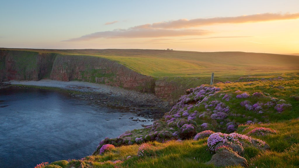 Duncansby Head which includes rugged coastline and tranquil scenes