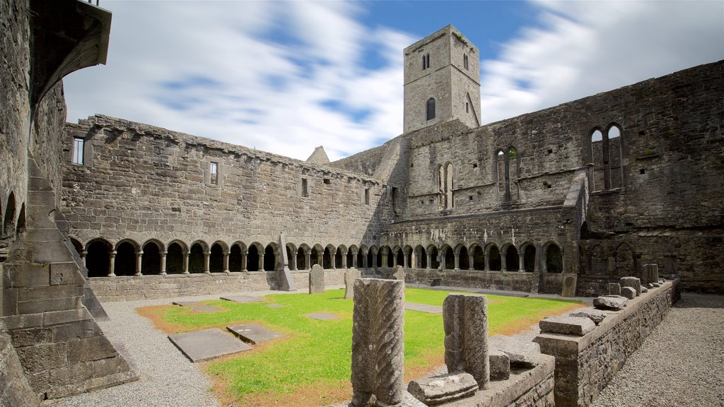 Sligo Abbey featuring a cemetery, chateau or palace and heritage architecture