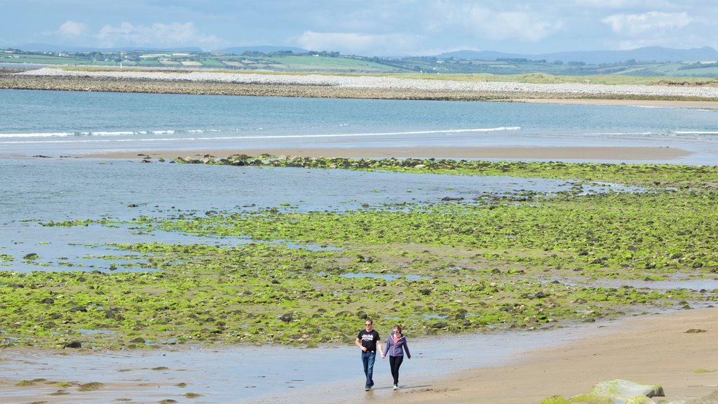 Strandhill Beach showing general coastal views and a sandy beach as well as a couple