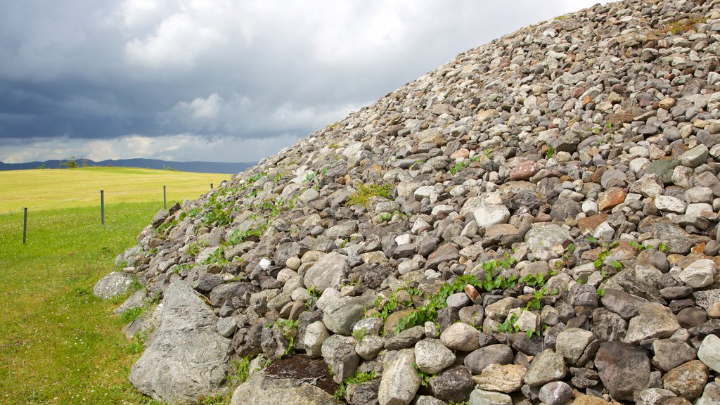 Carrowmore Megalithic Cemetery showing mountains, tranquil scenes and heritage elements